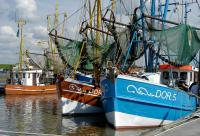 Hafen Dorum