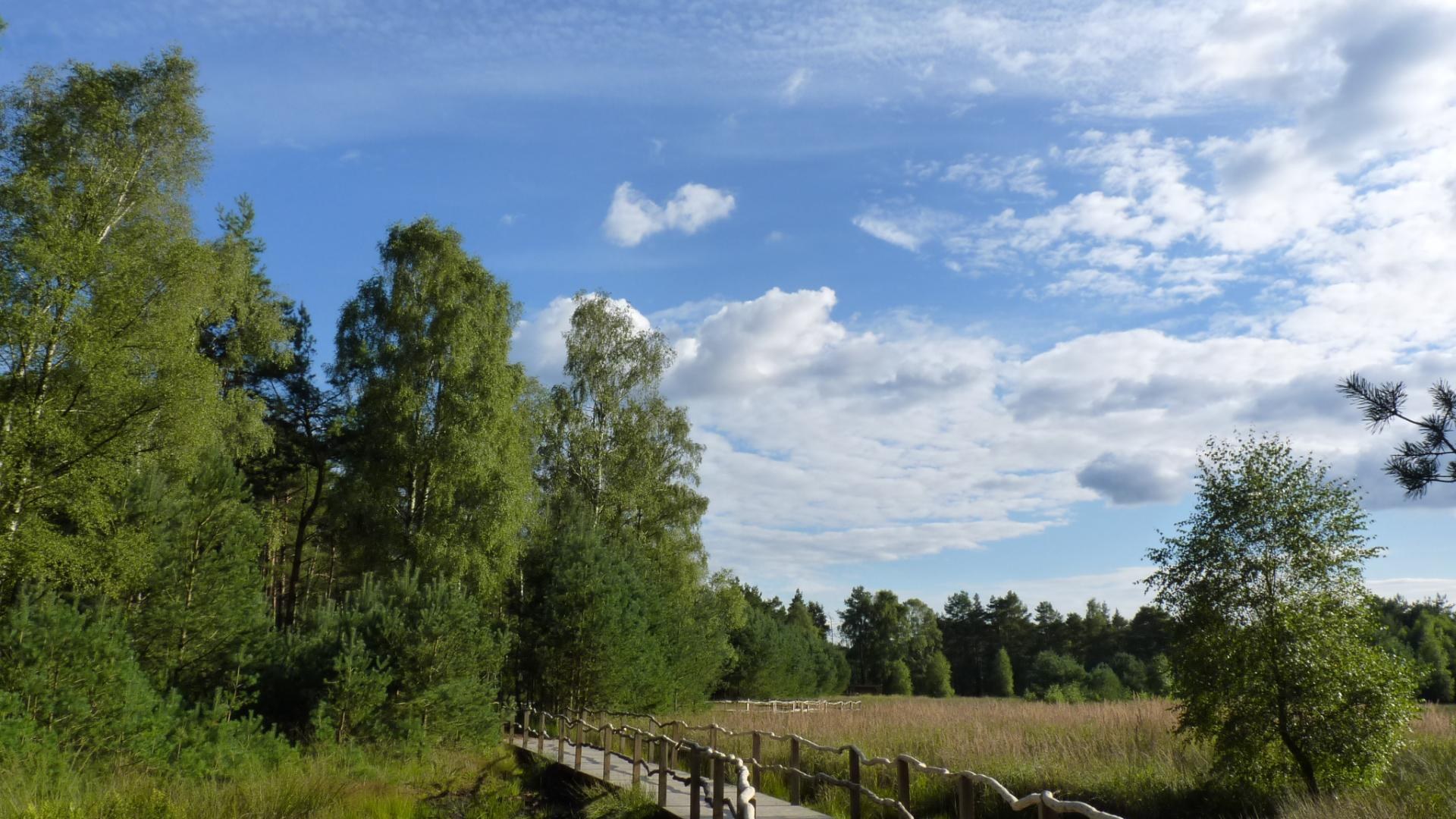 Naturerlebniswanderweg im grossen und weissen Moor