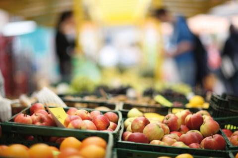 Osnabrücker Land - Frischen Obst auf dem Markt