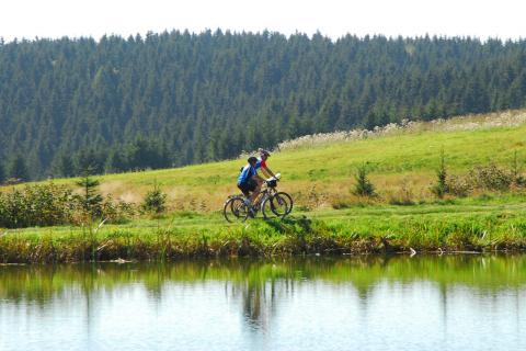 Mountainbike Touren im Harz