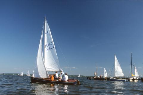 Segelboote auf dem Dümmer See